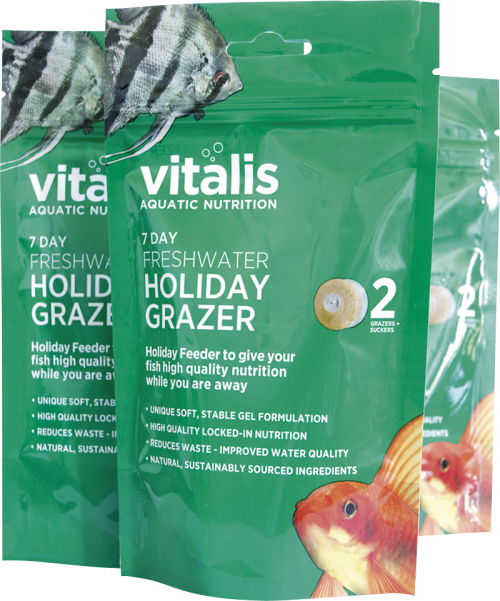 Vitalis Tropical Holiday Feeder